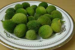 Kakora is used for vegetarian recipies