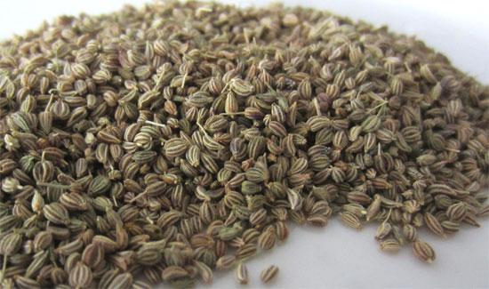 अजवाइन । Ajwain । Carom Seeds - Bishop's weed ... Carom Seed